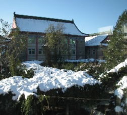 中国医学科学院整形外科医院院内雪景