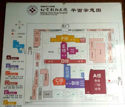 北京朝阳医院整形外科医院平面示意图
