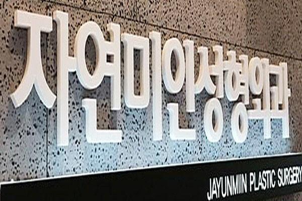 韩国自然美人整形外科LOGO