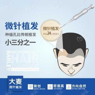 大麦微针采用的微针植发,种植孔传统植发小三分之一