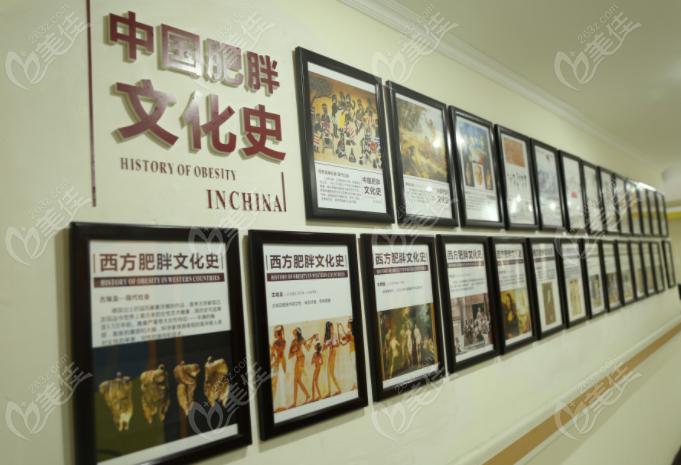 成都西南中医医院院内文化墙展示