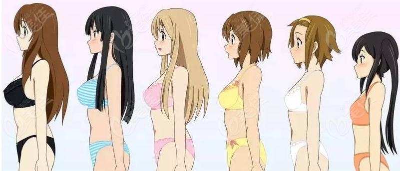 胸大小对比图