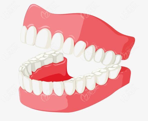 口腔内牙齿动画图