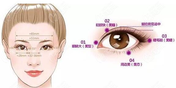 杭州美莱孟晨曦做双眼皮依据一定的美学标准